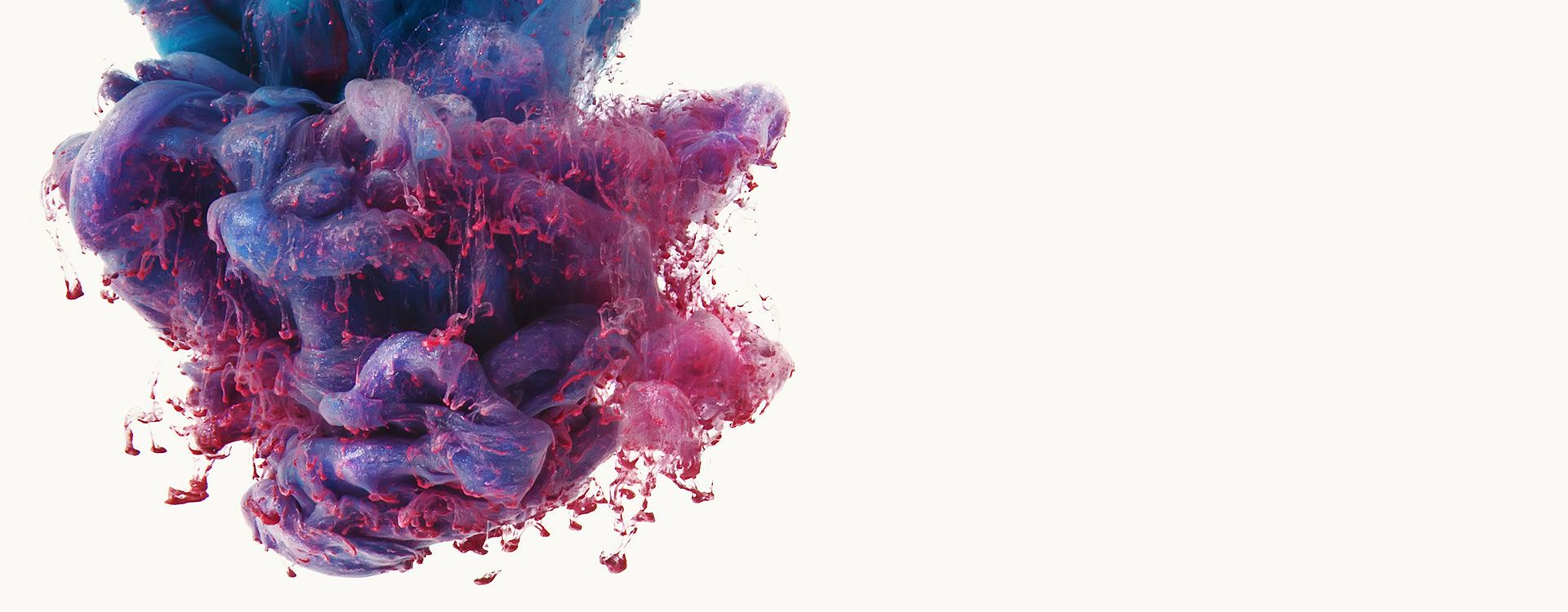pink print solutions graphic design and print cannock
